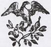 Spring Branch Book House Logo