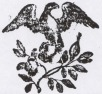 Spring Branch Book House Logo